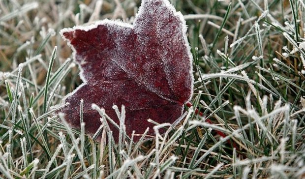 Готовимся к холодам: синоптики пообещали заморозки