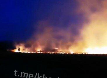 """Під Харковом палає поле, рятувальники і місцеві не справляються: """"Горить моторошно!"""""""