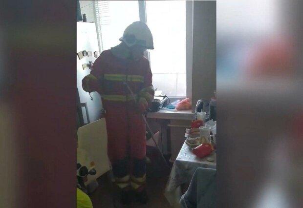В Днепре змея-экстремалка заползла на седьмой этаж и едва не довела женщину до инфаркта