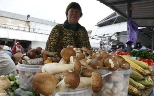 Як уникнути отруєння грибами: поради, які вас врятують