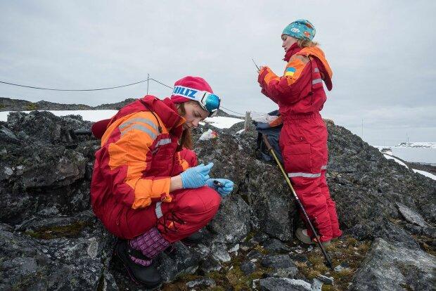 """""""Якщо дружини дізнаються..."""": в антарктичній експедиції ряди українських дослідників поповнили жінки"""