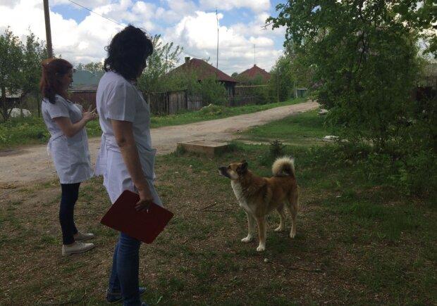 """Скажена кусака: в Одесі пенсіонерка з собакою стала """"грозою"""" району"""