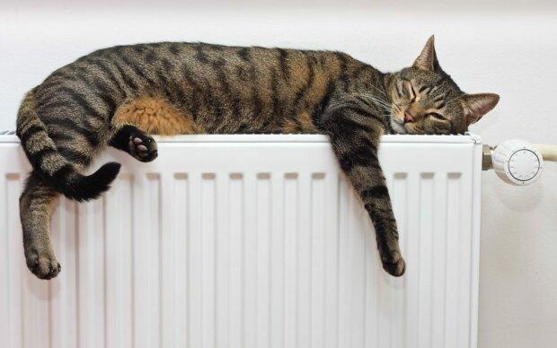 Франковчане, раздевайтесь: когда в квартирах потеплеют батареи