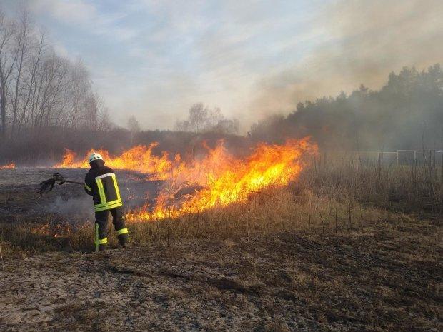 Одесчина в огне: адское пламя пожирает метр за метром, силы спасателей на исходе