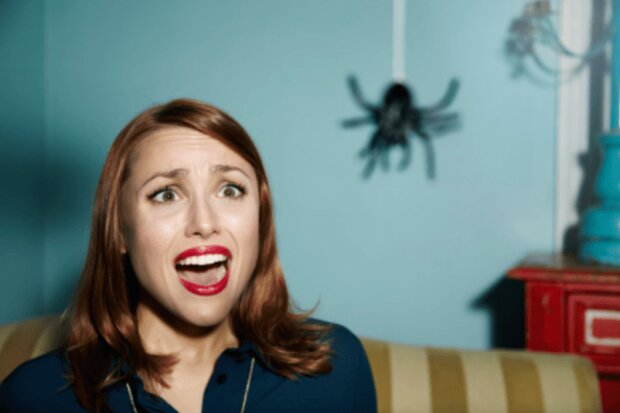 Женщина испугалась паука, poznavatelno.net