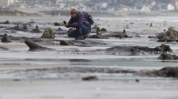 Доисторическая цивилизация обнаружилась после урагана: ждала под водой 4,5 тысячи лет