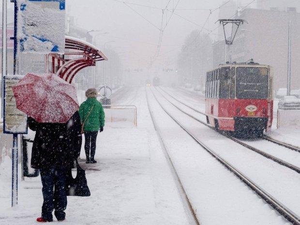 """В Киеве будут топить снег на канализации и мобильных """"плавильнях"""": это все, что предложил """"Киевавтодор"""" в сумасшедший пик травм"""