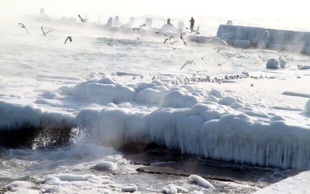 """Одесские пляжи занесло странным веществом, соцсети озадачены: """"Это не снег"""""""