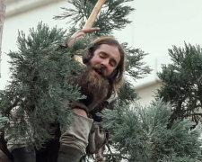 пьяный на елке