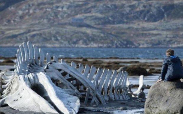 Чорні шипи та ікла: на березі знайшли небаченого монстра