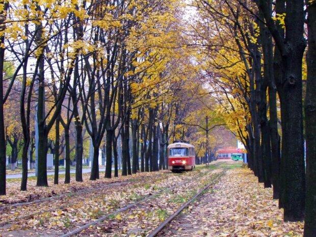 Погода у Харкові на 8 листопада: врятують тільки парасольки
