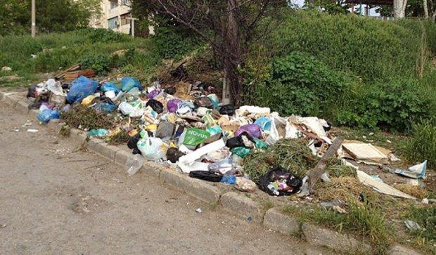 Севастопольцы попросили Путина спасти их от мусора (фото)