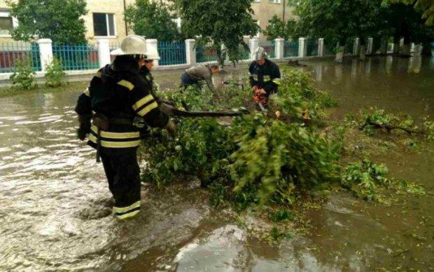 Природа беспощадна: какие пакости готовит погода украинцам