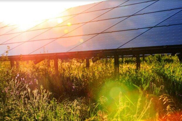 Сонячні інновації. Як використовувати енергію Сонця на благо?