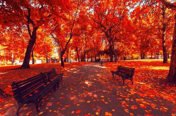 Погода у Вінниці 9 листопада: осінь розгуляється на повну силу, про прогулянки краще забути