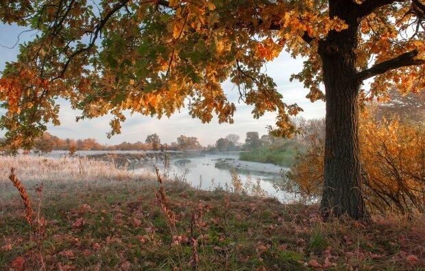 Погода на 31 жовтня: починається дуже підступний період