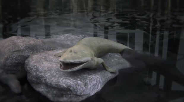 Доисторическая рыба, фото Flinders University