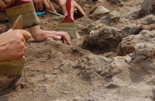 Обід 170 тисяч років тому: чим харчувалися стародавні люди насправді