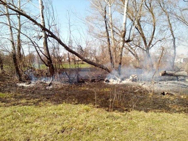 поджог травы, фото Национальной полиции