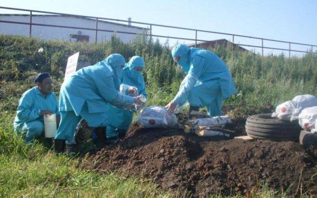 Смертельна небезпека: біля школи знайшли інфіковані трупи