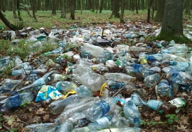Гори сміття і ліс, засмітили – на Тернопільщині показали самовільне сміттєзвалище на кілометр