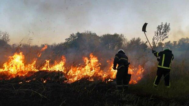 Пожар, фото ГСЧС