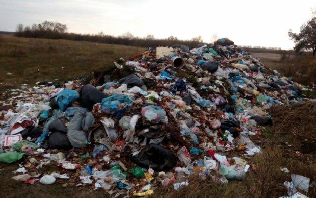 Львовский мусор нашел новое пристанище