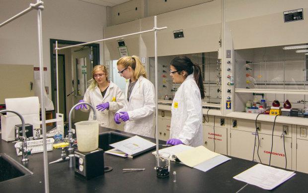 """Вчені створили перших у світі """"штучних"""" близнят, допомогло ГМО"""