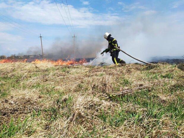 Львівщина у вогні - на Великдень Галичина повторила сумну долю Чорнобиля, в чому причина