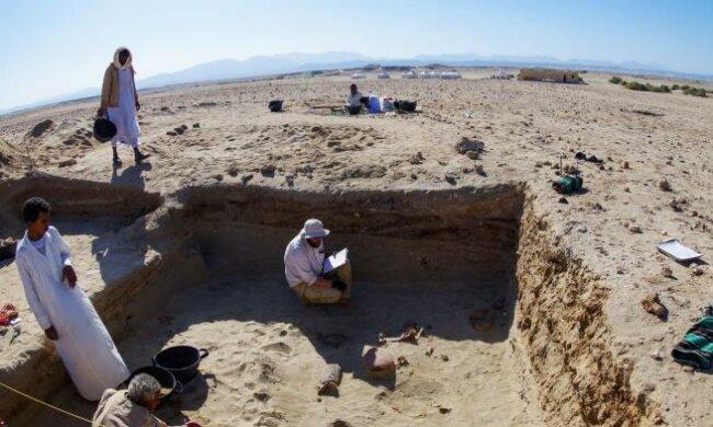 Розкопки / фото: ScienceMag