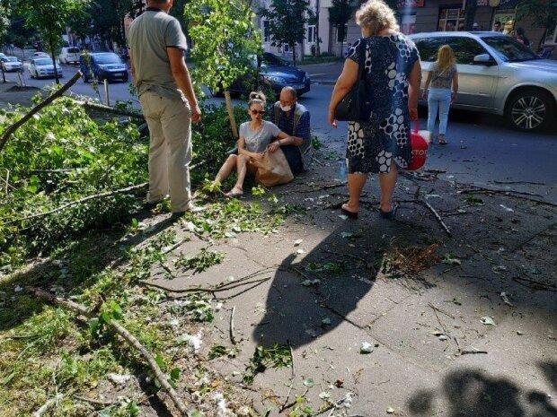 Фото: «Київ зараз»