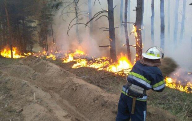 пожежа, ілюстративне фото: dsns.gov.ua