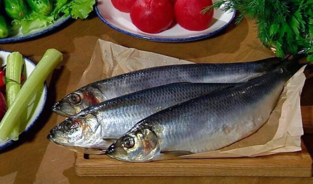 Фантастически полезная рыба: как выбирать сельдь, чтобы получить максимум для здоровья