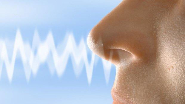 Задирай нос: обнаружен простой способ запомнить все