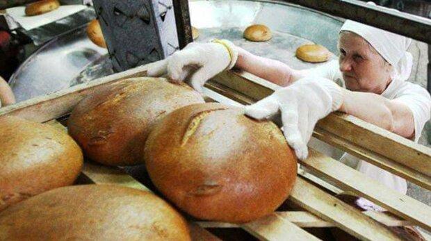 Пекарня, фото: Госслужба Украины во вопросам безопасности пищевых продуктов и защиты потребителей