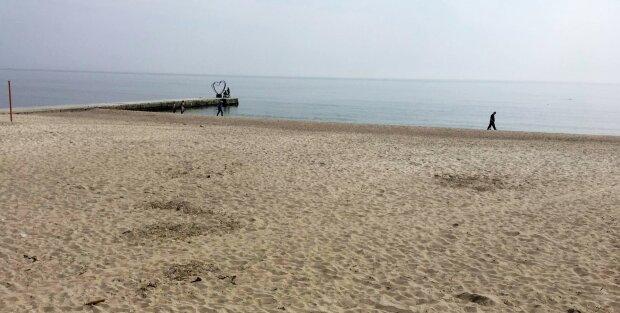 """На одесском пляже засекли толпу моржей, сезон """"голой"""" зимы открыт: кадры не для мерзляков"""