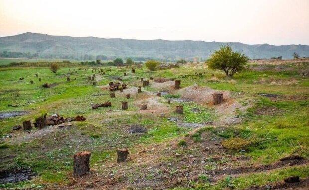 Карабах, фото: youtube