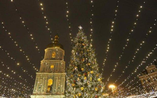 Очень странная елка под Киевом поставила на уши соцсети