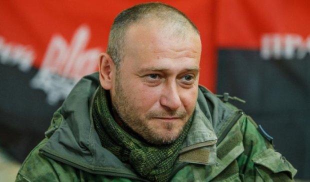 Ярош просит МВД и СБУ проверить Мустафу Найема