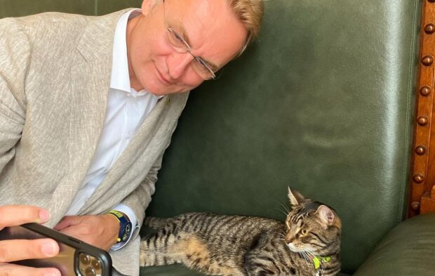 """Кіт Садового перетворився на антистрес для львів'ян - """"Дивитися тричі на день після їжі"""""""