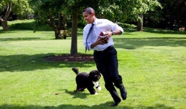 """""""Сын"""" Кеннеди пытался украсть собаку Обамы"""