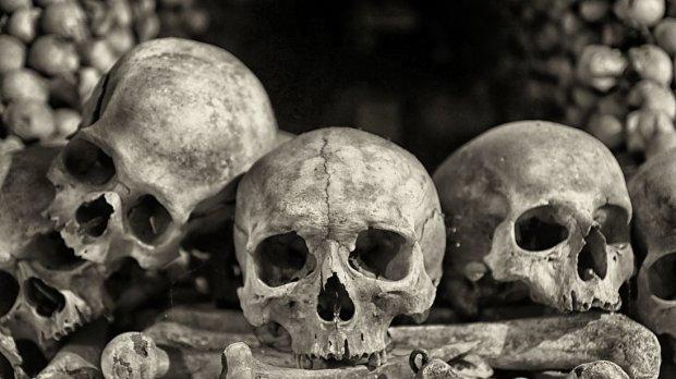 Черная смерть: медики обнаружили очаг страшной пандемии в Европе