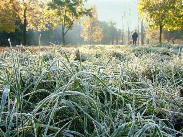 Винничане, мужайтесь: синоптики огорошили морозным прогнозом на 8 октября