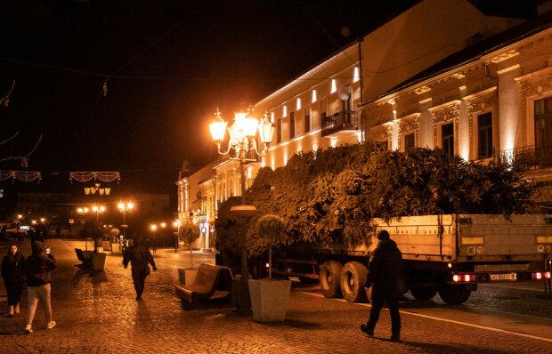 """В Ужгороді встановили пухнасту 12-метрову красуню: """"З наступаючим!"""""""