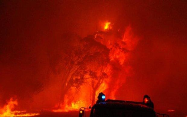 Мощный пожар охватил город под Киевом: опубликовано видео