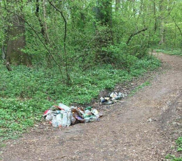 Купи сміття та непотребу - у Львові любителі шашликів перетворили Сихівський ліс на огидне звалище