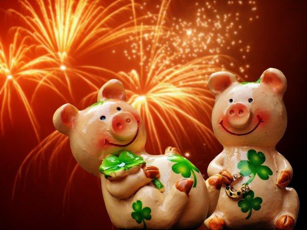 Опубліковано гороскоп на 2019 рік: подарунки від Свинки для всіх знаків Зодіаку