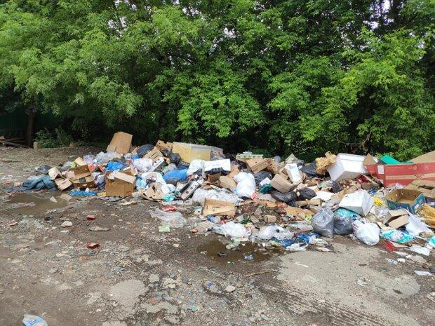 """На Львовщине город превратился в свалку отходов: """"Скоро перекроют дорогу мусором"""""""