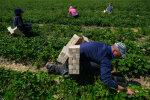 Заробітчани, фото: Getty Images