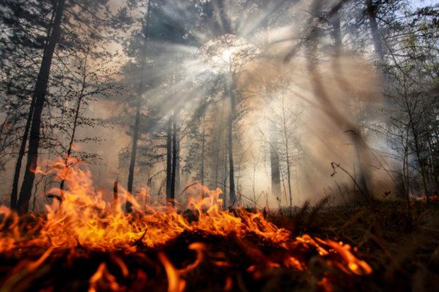 В России масштабный пожар охватил миллионы гектаров
